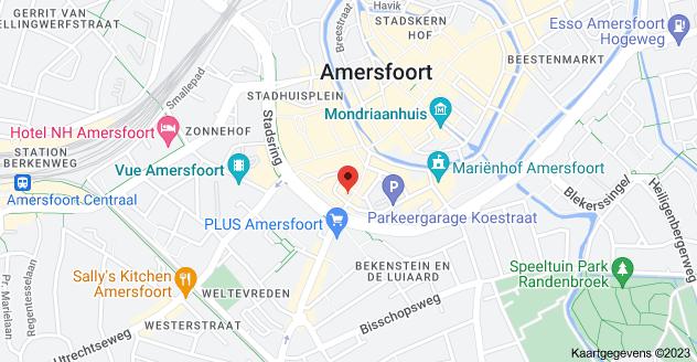 Kaart van Arnhemsestraat 31, 3811 LG Amersfoort